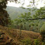 Nagarkot – 1,5 dnia