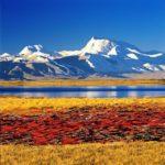 Tybet wycieczka objazdowa/8 dni, 4790 m npm.